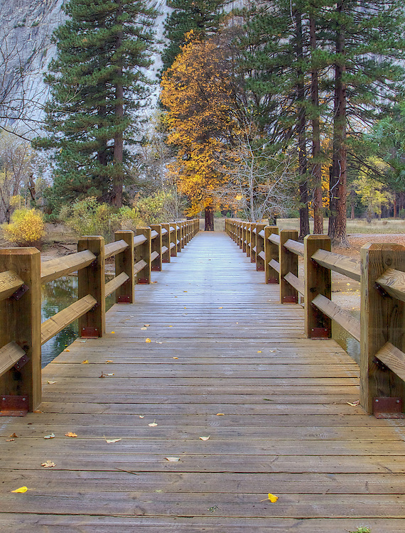 yosemite valley in the fall, a frost covered footbridge in the early morning