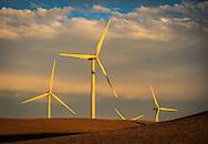 Wind turbine power-generating windmills at sunset, Montezuma Hills, Solano County, California