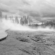 Steaming Thermal Geyser Pools- Yellowstone National Park - Black & White