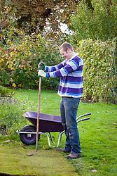 Laying turf. Tapping down with rake