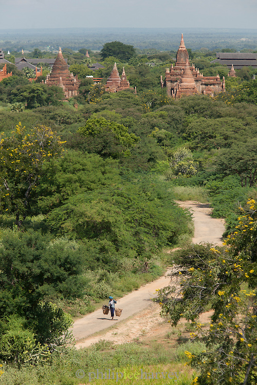A woman walks carrying wood for construction in the ancient city of Bagan, Myanmar