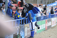 The Rochdale Mascot during the EFL Sky Bet League 1 match between Rochdale and Bradford City at Spotland, Rochdale, England on 21 April 2018. Picture by Mark Pollitt.
