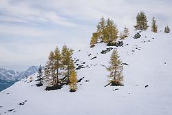 THEMENBILD - herbstlich winterliche Landschaft am Skigebiet Kitzsteinhorn, aufgenommen am 21. Oktober 2020 in Kaprun, Österreich // autumn and winter landscape at the Kitzsteinhorn ski resort, Kaprun, Austria on 2020/10/21. EXPA Pictures © 2020, PhotoCredit: EXPA/ JFK