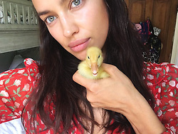 """Irina Shayk releases a photo on Instagram with the following caption: """"Weekend at the farm\u2764\ufe0f\ud83d\udc25\ud83c\udf3f"""". Photo Credit: Instagram *** No USA Distribution *** For Editorial Use Only *** Not to be Published in Books or Photo Books ***  Please note: Fees charged by the agency are for the agency's services only, and do not, nor are they intended to, convey to the user any ownership of Copyright or License in the material. The agency does not claim any ownership including but not limited to Copyright or License in the attached material. By publishing this material you expressly agree to indemnify and to hold the agency and its directors, shareholders and employees harmless from any loss, claims, damages, demands, expenses (including legal fees), or any causes of action or allegation against the agency arising out of or connected in any way with publication of the material."""