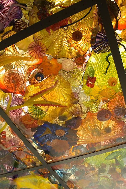 Seaform Pavillion, glass art by Dale Chihully on ceiling of Chilhuly Bridge of Glass near Museum of Glass, Tacoma, Washington, USA