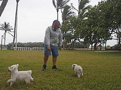Director of Engineering of the Cleveland, Ricardo Franco playing with his two dogs Dolce, left, and Coco at Lummus Park on Miami Beach as the outer bands of Hurricane Irma reach South Florida early on Saturday, September 9, 2017. Photo by David Santiago/El Nuevo Herald/TNS/ABACAPRESS.COM