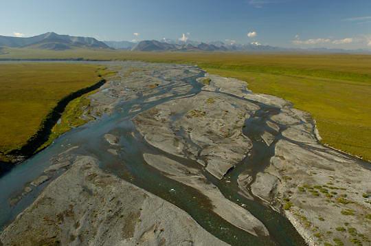 Arctic National WIldlife Refuge. Alaska.