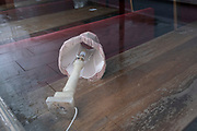 An overturned lampshade lies on an empty table in a pub, still closed during the third lockdown of the Coronavirus pandemic, at Elephant & Castle in south London, on 20th January 2021, in London, England. Pubs and bars remain shut accordng to government restrictions, helping to reduce infection rates in the capital at a time when the UK has the highest death rates per 100,000.