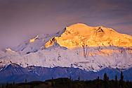 Sunset glow on Mt. McKinley, Denali National Park & Preserve, Interior Alaska, Summer.