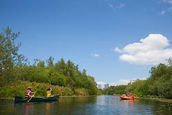North America, United States, Washington, Bellevue, kayaking in Mercer Slough Nature Park.