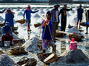 20 FEBRUARY 2019 - BAN LAEM, PHETCHABURI, THAILAND: Salt workers wait for the go ahead to start bringing salt in from the field on one of the first days of the 2019 salt harvest in Ban Laem, Thailand. Ban Laem's salt fields are expanding because salt harvesters in Samut Sakhon and Samut Songkhram,  which are closer to Bangkok, are moving to Ban Laem as their land is turned into industrial parks.    PHOTO BY JACK KURTZ
