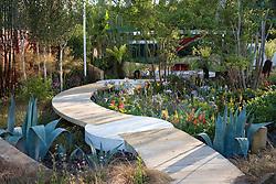 Oak pathway linking concrete platforms in the Lloyds TSB garden