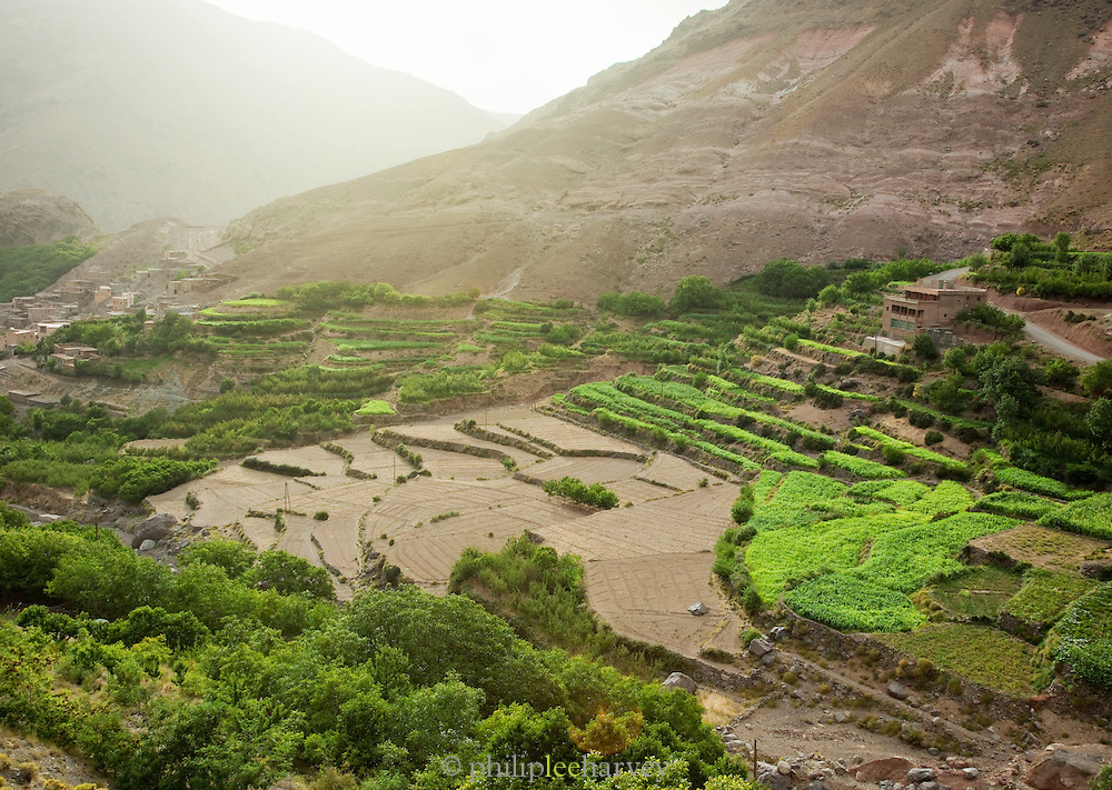 A hillside has been transformed into terraces to maximise agricultural yield in the Imlil Valley, Toubkal National Park in Morocco
