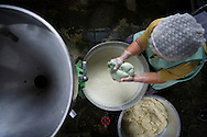 Chiyo Miyagi, age 73, spends hours each day in a small kitchen making tofu she sells to local villagers. Tofu is an almost uniquely perfect food: low in calories, high in protein, rich in minerals, devoid of cholesterol, and rich with essential amino acids