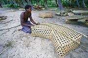 weaving fish trap, Samana Bay, Dominican Republic ( Caribbean )