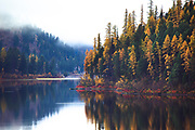 Fall colors on Salmon Lake, Montana.