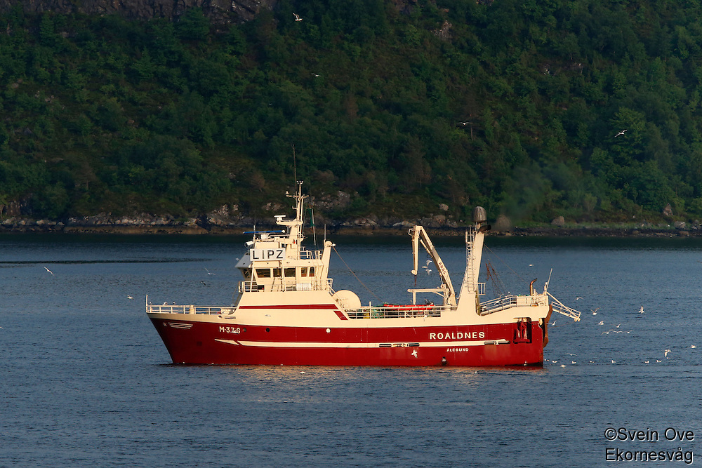 Fiskebåten Roaldnes i Ellingsøyfjorden.<br /> Foto: Svein Ove Ekornesvåg