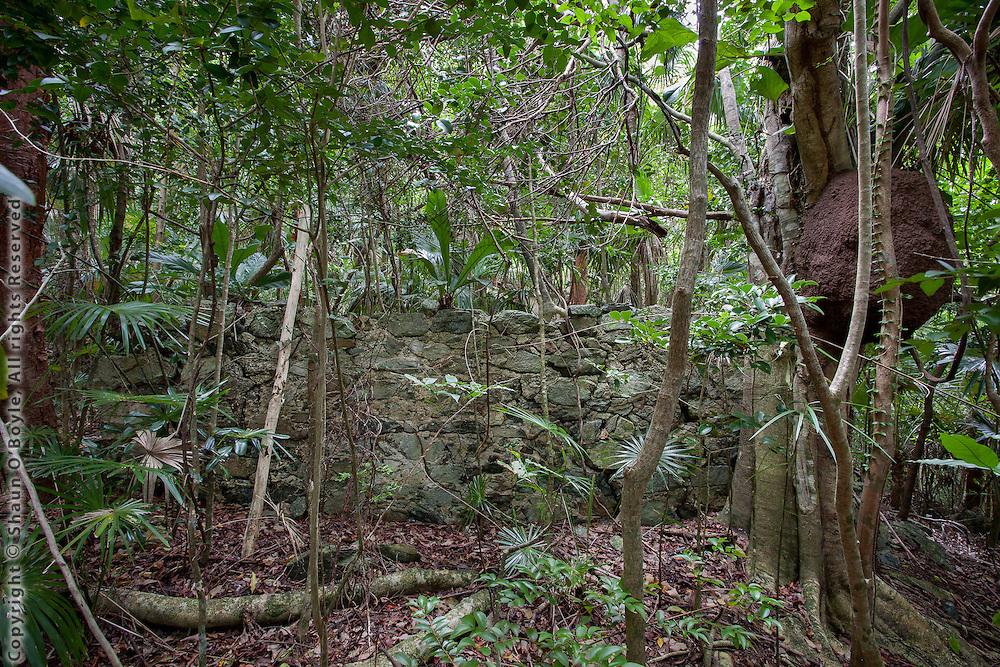 Hope Plantation Ruins, St John, USVI