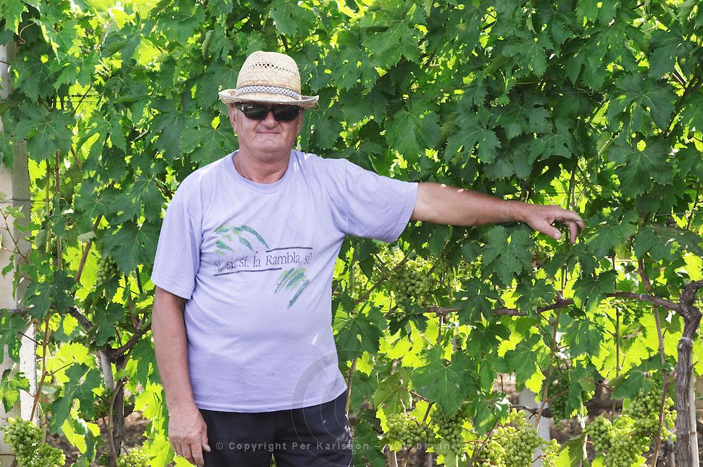 Vineyard worker posing by a vine, in straw hat, black sun shades glasses and blue tshirt Fidal vine nursery and winery, Zejmen, Lezhe. Albania, Balkan, Europe.
