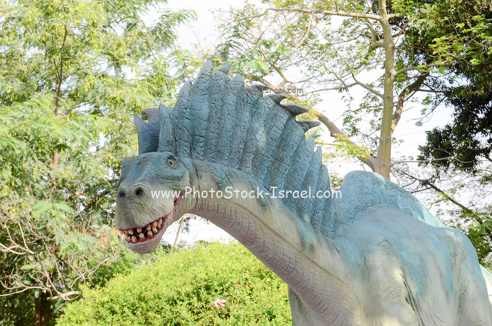 Amargasaurus is a genus of dicraeosaurid sauropod dinosaur from the Early Cretaceous Period (130–125 mya) of what is now South America.