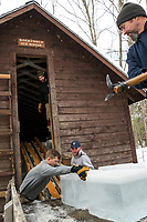 Dillon Mailand, Keegan Rasmussen, Ryan Hambrook and Martin Carney unload a truck load of ice blocks into the Rockywold Ice House during RDC's annual ice harvest on Tuesday. ©2018 Karen Bobotas Photographer