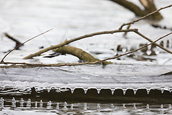 Harefield, UK. 13th February, 2021. Small icicles are formed around the edge of a sheet of ice above the surface of a lake in the Colne Valley. The current cold spell is expected to be replaced by milder conditions after tomorrow.
