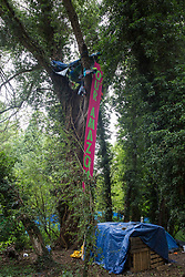 A banner reading 'Our Amazon' is suspended from a tree house built by environmental activists from HS2 Rebellion to try to prevent the destruction of trees in conjunction with the HS2 high-speed rail link in Denham Country Park on 13th July 2020 in Denham, United Kingdom. The HS2 project is currently projected to cost around £106bn and will remain a net contributor to CO2 emissions during its projected 120-year lifetime.