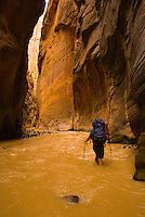 A young man hikes the Virgin River Narrows in Zion National Park, Utah.