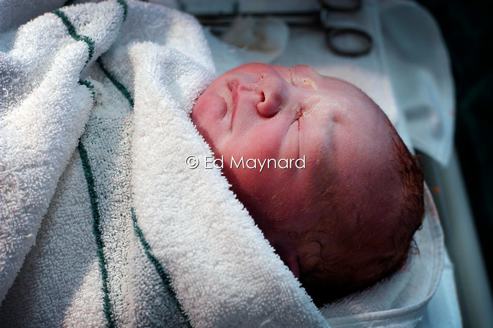 Baby boy immediately after being delivered by caesarean section, Kettering Hospital, Northamptonshire, UK.