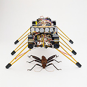 Robot developed by MIT,  mimics the movement of insects and learns to walk from its mistakes.   The movement of insects inspired a next generation of potential interplanetary robots.