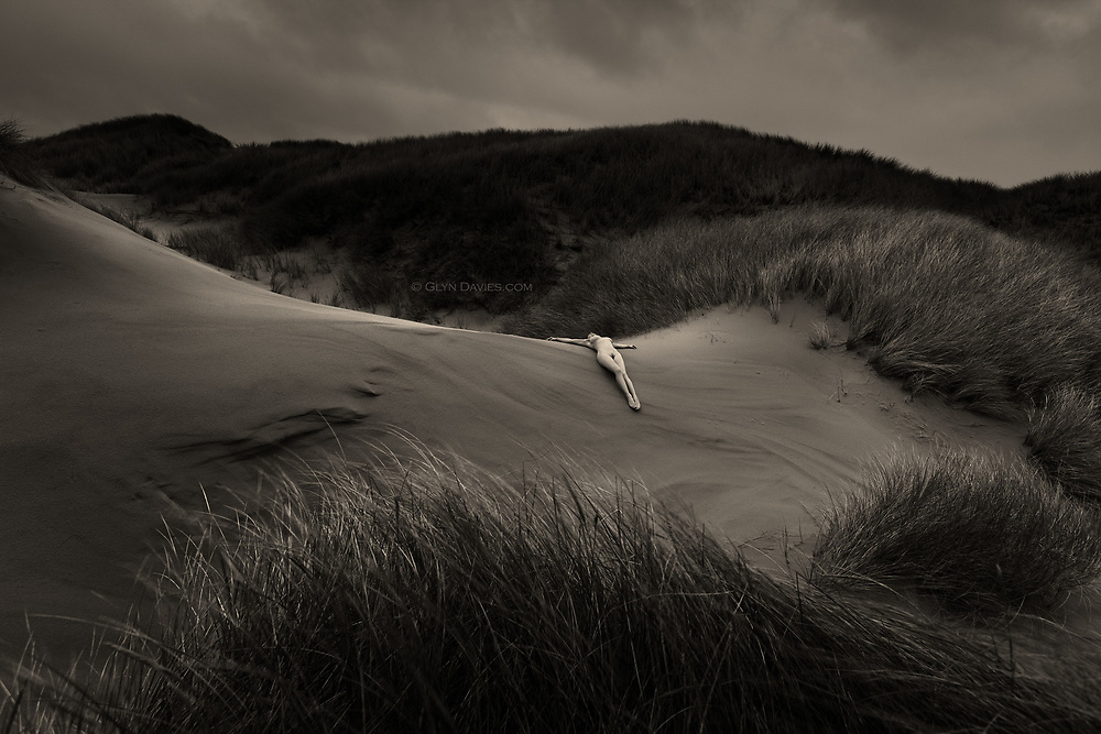 Nominated for 11th International B&W Spider Awards<br />