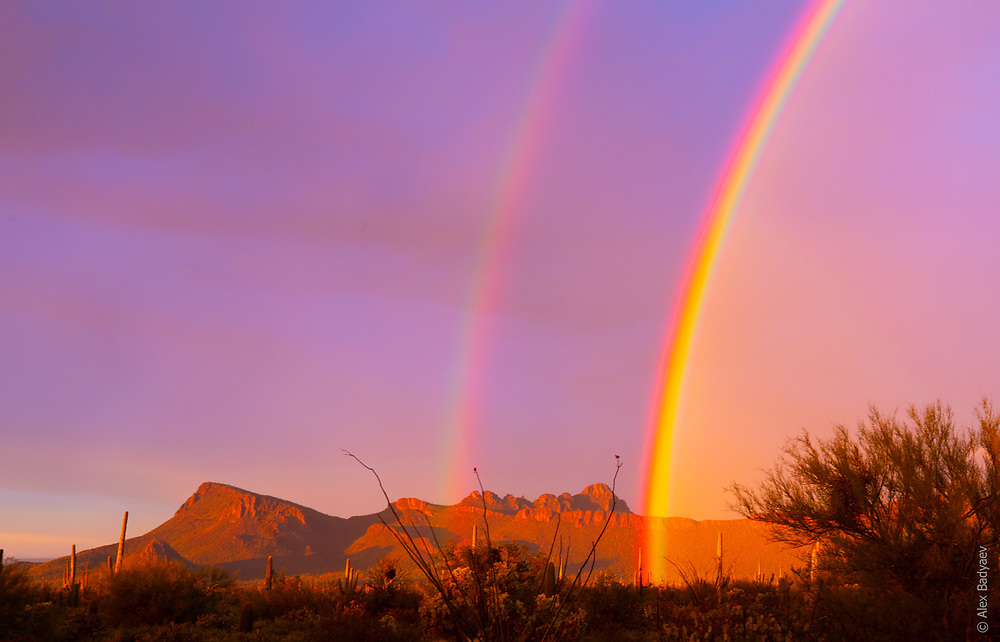 RAINBOW FORCEPTS   hold Picture Rocks in Tucson, Arizona on the first day of  2020. Was NOT an accurate preview of the year in retrospect...