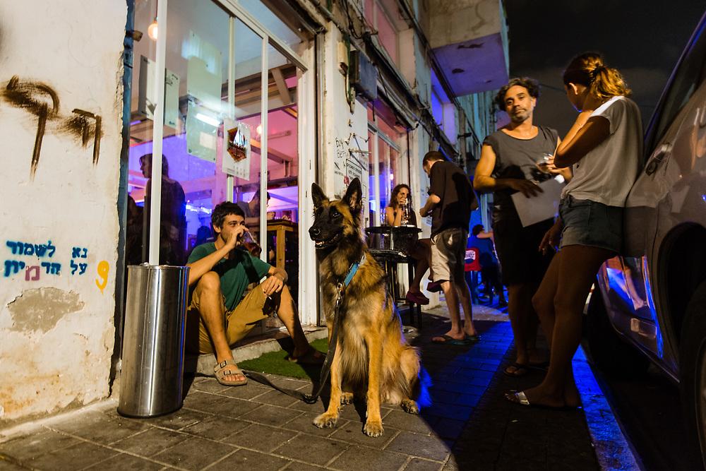 A dog sits outside Bar Mitzvah, a bar in Tel Aviv's Florentine neighborhood