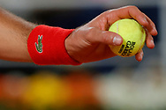 NOVAKDJOKOVIC (SRB) with the official Wilson tennis ball in hand to serve during the Roland Garros 2020, Grand Slam tennis tournament, on October 9, 2020 at Roland Garros stadium in Paris, France - Photo Stephane Allaman / ProSportsImages / DPPI