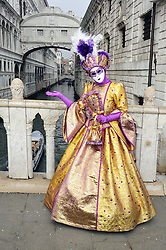 © Licensed to London News Pictures. 31/01/2016. People wearing carnival dress pose  during the 2016 Venice Carnival on January 31, 2016. Photo credit : Alan Roxborough/LNP