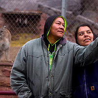 Roy Begay and Lucinda Brieno, right, take a selfie together in front of the cougar enclosure during the Winter Stories tour at the Navajo Nation Zoo in Window Rock Wednesday.