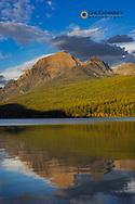 Rainbow Peak reflects in Bowman Lake in Glacier National Park, Montana, USA