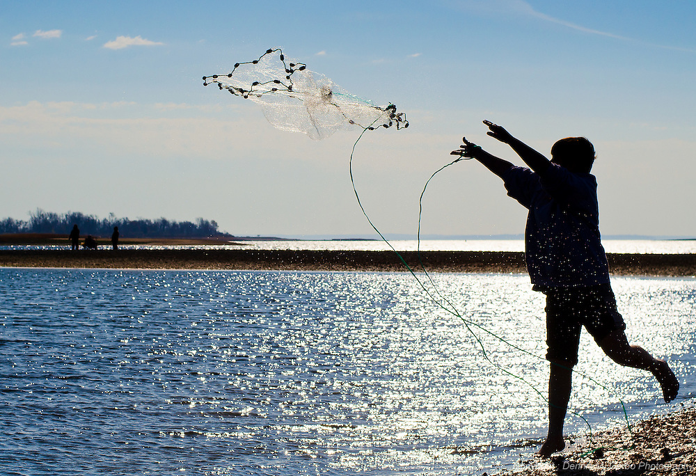 Boy fishing with net - Calf Beach, Norwalk, CT