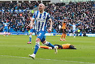 Brighton and Hove Albion v Wolverhampton Wanderers 140315