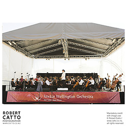 Vector Wellington Orchestra at the Vector Wellington Orchestra: An Afternoon In Vienna at Government House, Wellington, New Zealand.