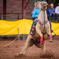 062615       Cable Hoover<br /> <br /> Kaitlyn Silva's horse puts on the brakes as she lassos the calf in the breakaway roping during the Best of the Best Timed Event Invitational youth rodeo Friday at Red Rock Park.