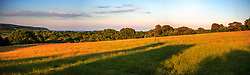 Wilkswood Farm in Dorset, looking out to the Isle of White in the evening time.