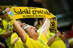 Saleski grascaki, fans of Gorenje during handball match between RD Slovan and RK Gorenje Velenje in Round #10 of 1. NLB Leasing liga 2015/16, on November 13, 2015 in Arena Kodeljevo, Ljubljana, Slovenia. Photo by Vid Ponikvar / Sportida