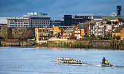 Putney, Greater London. 16th February 2020, Pre Boat Race Fixture,  University Women's Boat Club, [R] CUWBC Goldie  vs [L] Tideway Scullers School, Putney Bridge in the background, Championship Course, Putney to Mortlake, River Thames, [Mandatory Credit: Peter SPURRIER/Intersport Images],