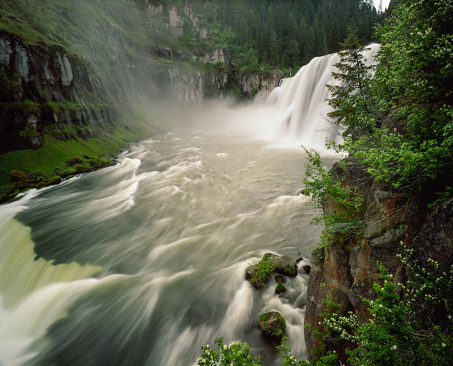 Editions of 17<br /> Snake River Mesa Falls on the Henrys Fork with spring foliage peaking and high water runoff abounding