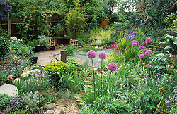 Pond area and pergola with irises, aliiums, primulas and euphorbia. Protective wire grid put over pond to stop children falling in.