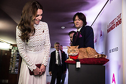 The Duchess of Cambridge meets Bob the cat and his owner James Bowen at the world premiere of A Street Cat Named Bob, at Curzon cinema in Mayfair, London.
