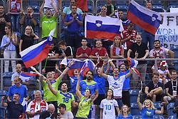 Fans of Slovenia