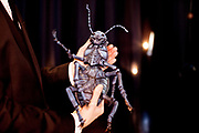 The finished model of the insect body by Gregor Samsa, created by the artists Vojtech Kiss and Ondřej Slavík in the Goethe Institute Prague.