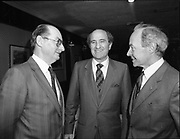Irish-Italian business association lunch with Mr. Lorenzo the Italian ambassador at Caesar, Dublin,<br />